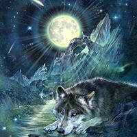 Antonia Neshev, Wolf Night Symphony