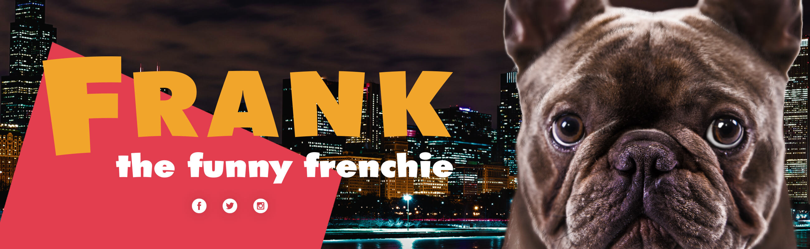 Frank The Funny Frenchie